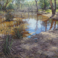 Barbara Beasley- Southgate 'Murray Backwater, Corowa'