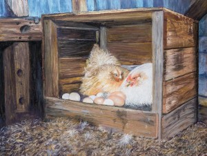 Colleen Ryan - The Hen House